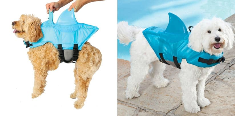 SwimWays Sea Squirts Dog Life Vest with Shark Fin