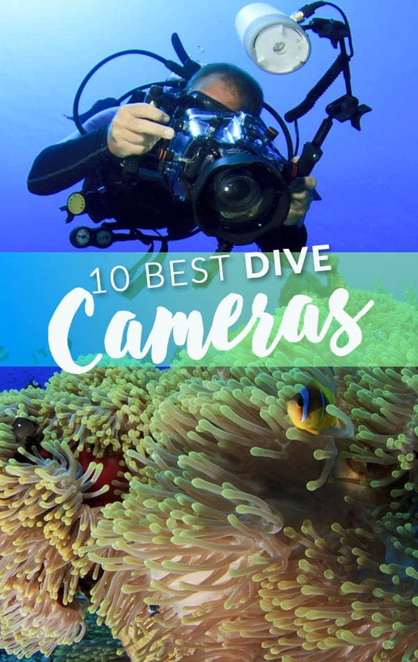 10 Best Dive Cameras Side Banner