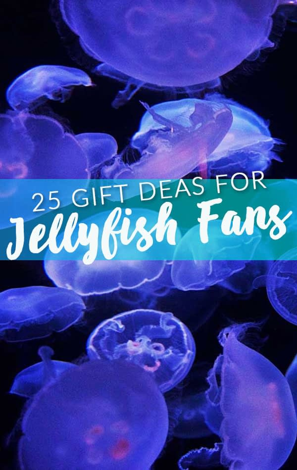 Best Side Bar Banner - Jellyfish Gifts