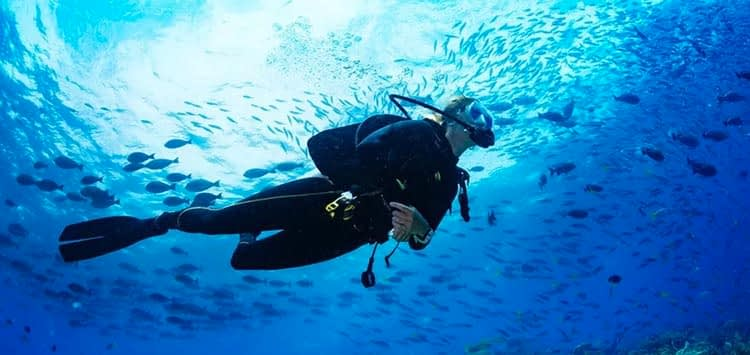 Stop when you are separated from your dive buddy