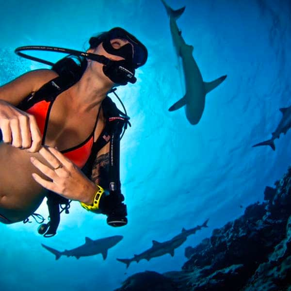 Where Is Best To Scuba Dive