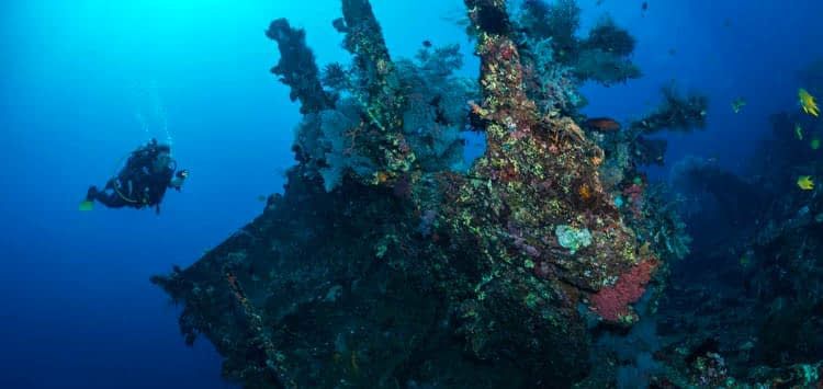 Bali Best Dive Destinations for Underwater Photography