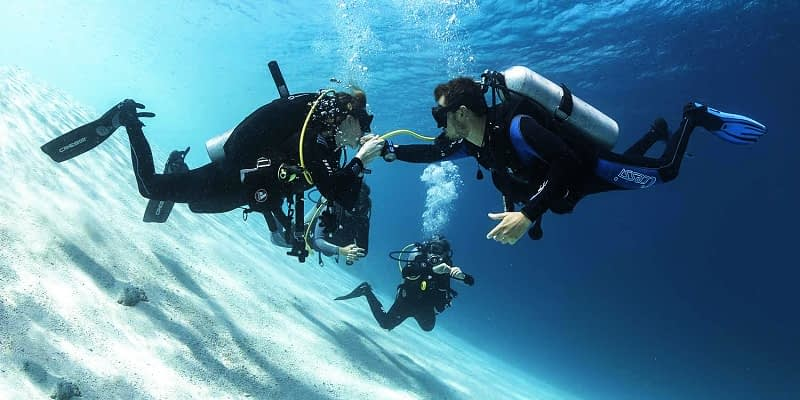 Scuba Diving Instructor or Guide