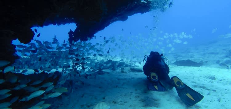 Diving in Canary Islands
