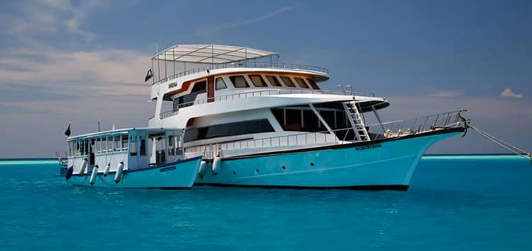 Sheena Liveaboard Scuba Diving Maldives