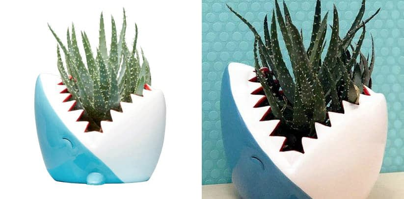 Streamline Ceramic Shark Flower Planter Pot
