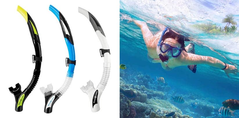 Aqua Lung Impulse 3 2-Valve Flex Dry Snorkel