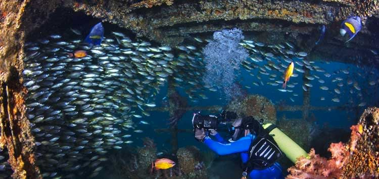Diving in Oman