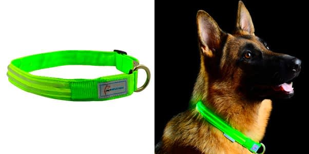 5.Pet Industries LED Collar with Metal Buckle
