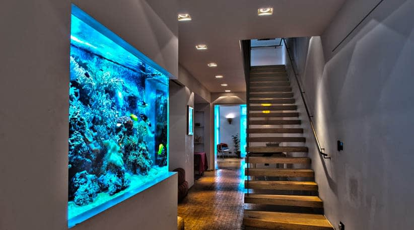 Top 5 Best LED Aquarium Lighting