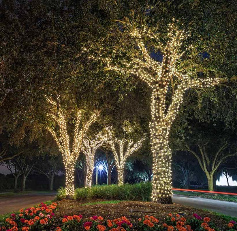 String Lights for Trees